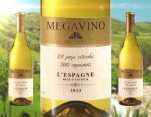 Megavino 2013